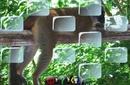 docs/screenshots/erase_clic_small.jpg