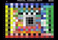 data/targets/CMP_DT_003.png