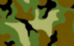 data/backgrounds/camouflage.png