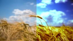 data/pixmaps/effects/frei0r-filter-3-point-color-balance.png