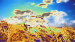 data/pixmaps/effects/frei0r-filter-colortap.png