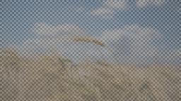 data/pixmaps/effects/frei0r-filter-scanline0r.png