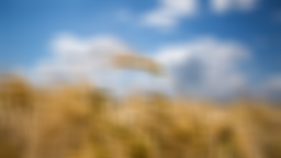 data/pixmaps/effects/frei0r-filter-squareblur.png