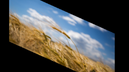 data/pixmaps/effects/frei0r-filter-3dflippo.png